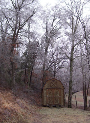 tree-ice-and-shed