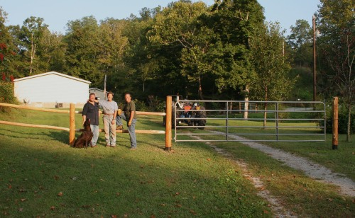 Fencing crew and fence