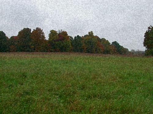 hilltop pastures in fall